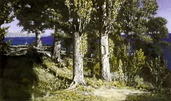 Кипарисы на берегу моря. Крым (1887 г.)