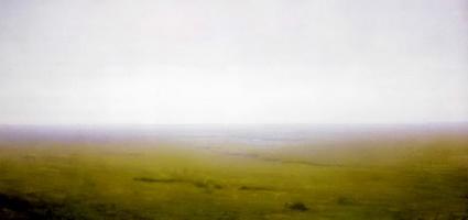 Пейзаж. Степь (1890-е гг.)