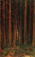 Закат с деревьями (1890 г.)