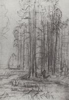 Лесной пейзаж (Эскиз)