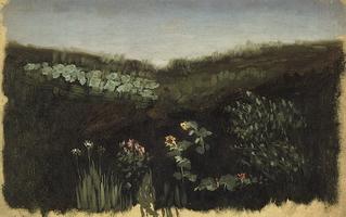 Подсолнухи. Крым (1880 г.)