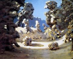 Солнечные пятна на инее (1876 г.)